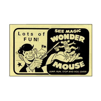 Wonder Mouse  by Fun Inc.